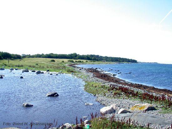 Øitangen sett fra knausen lengst oppe på Kråka. Kråkedammen i forgrunnen til venstre.